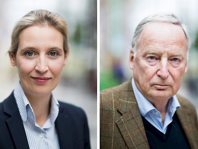 Das steht im Wahlprogramm der Alternative für Deutschland