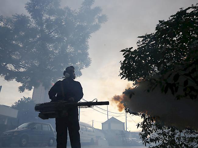 Gesundheit Wissenschaft Brasilien : Nach 18-Monaten: Zika-Nostand in Brasilien