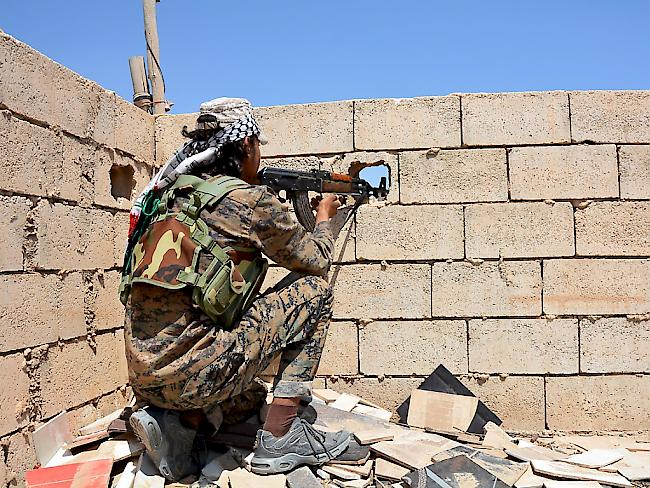 IS-Gegner rücken in Dschihadisten-Bastion Al-Rakka vor!
