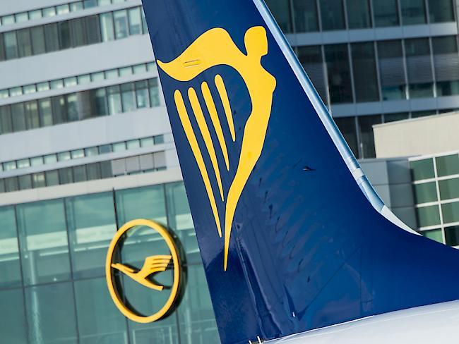 Ein Jet von Ryanair am Flughafen in Frankfurt am Main. Bis zum Ende des Sommerflugplans Ende Oktober will die irische Airline täglich zwischen 40 und 50 Flüge zu streichen